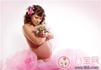 孕期可以插花胎教吗 孕妇什么时候连插花胎教